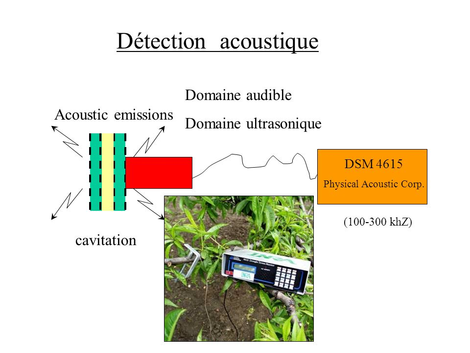 Détection acoustique DSM 4615 Physical Acoustic Corp.