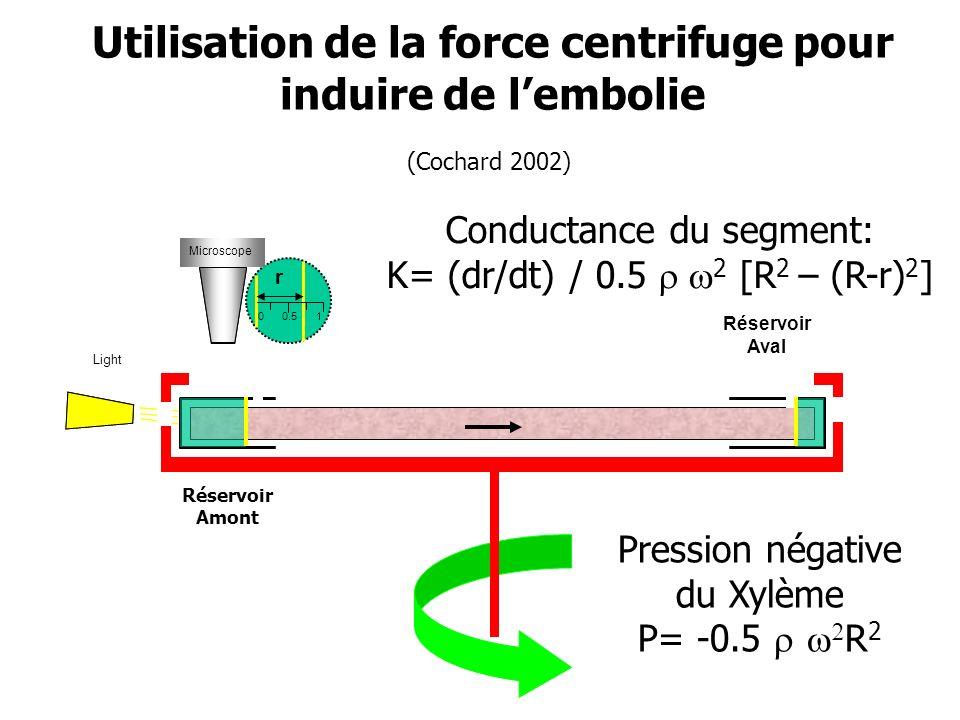 Microscope 0 r 0.5 1 Light Réservoir Amont Réservoir Aval Microscope Pression négative du Xylème P= -0.5 R 2 Conductance du segment: K= (dr/dt) / 0.5 2 [R 2 – (R-r) 2 ] Utilisation de la force centrifuge pour induire de lembolie (Cochard 2002)