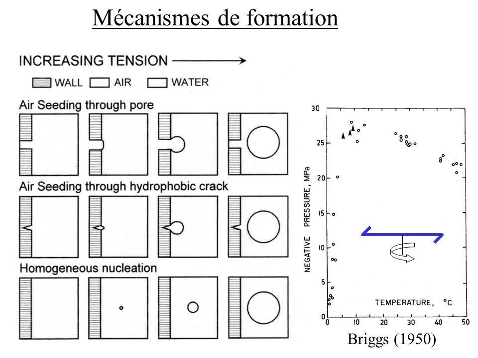 Briggs (1950) Mécanismes de formation