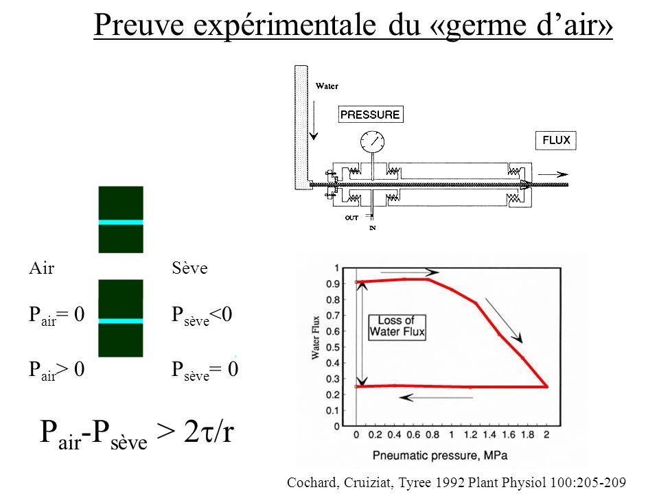 Preuve expérimentale du «germe dair» AirSève P air = 0P sève <0 P air -P sève > 2 /r P air > 0P sève = 0 Cochard, Cruiziat, Tyree 1992 Plant Physiol 100:205-209