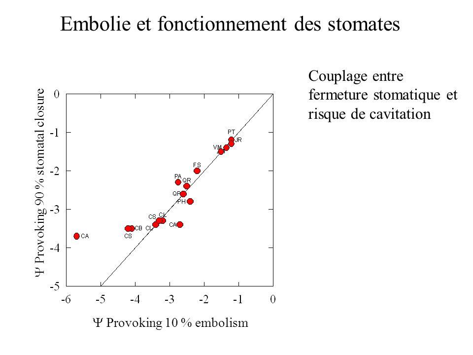 Provoking 10 % embolism Provoking 90 % stomatal closure Couplage entre fermeture stomatique et risque de cavitation