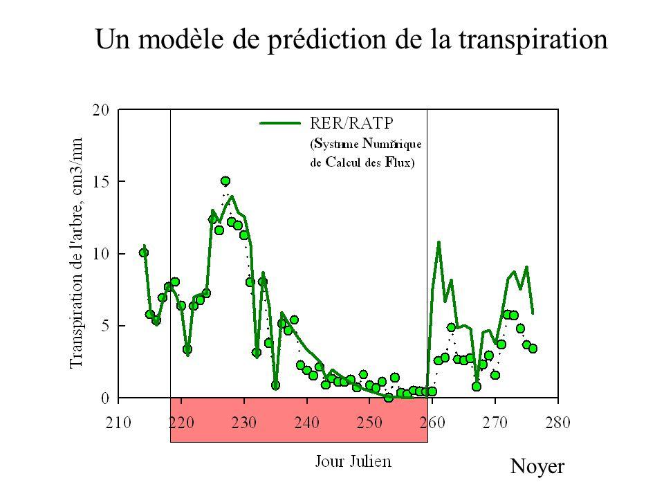 Un modèle de prédiction de la transpiration Noyer