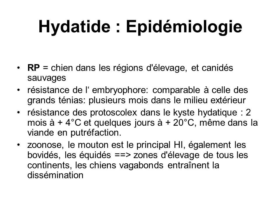Hydatide : Epidémiologie RP = chien dans les régions d'élevage, et canidés sauvages résistance de l embryophore: comparable à celle des grands ténias: