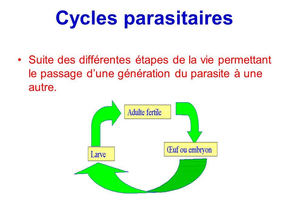 Cycles parasitaires Suite des différentes étapes de la vie permettant le passage dune génération du parasite à une autre.