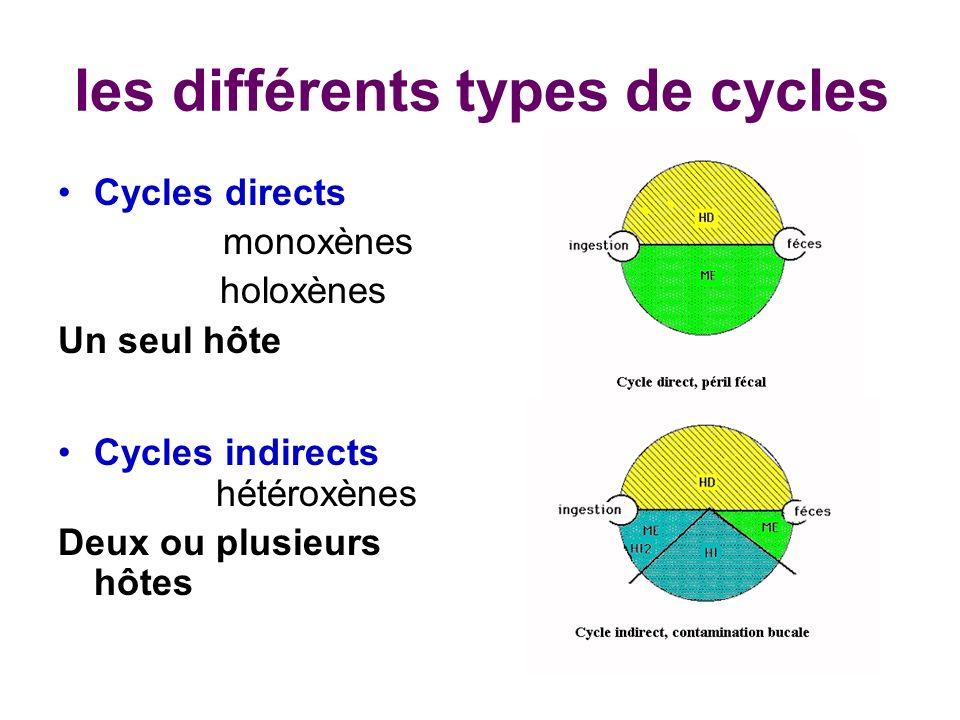les différents types de cycles Cycles directs monoxènes holoxènes Un seul hôte Cycles indirects hétéroxènes Deux ou plusieurs hôtes