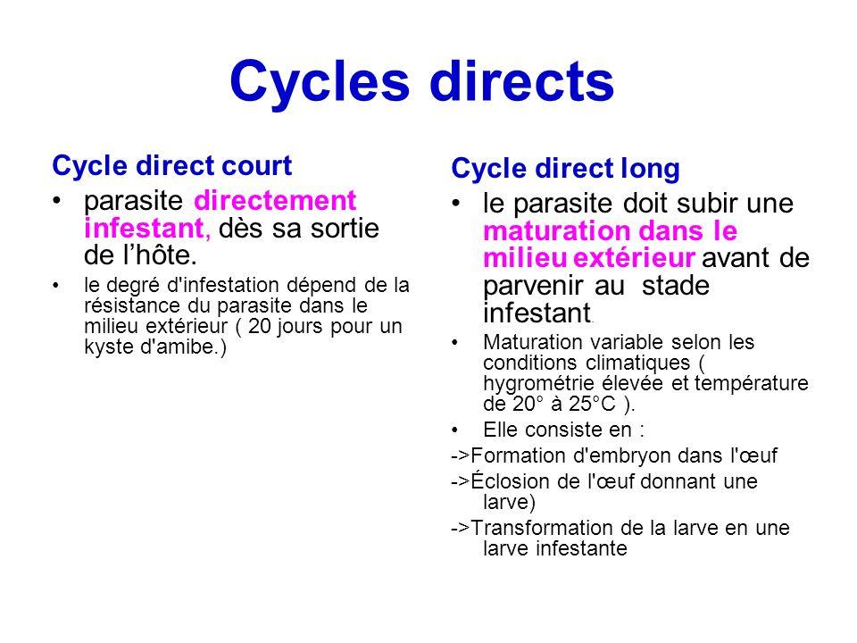 Cycles directs Cycle direct court parasite directement infestant, dès sa sortie de lhôte. le degré d'infestation dépend de la résistance du parasite d