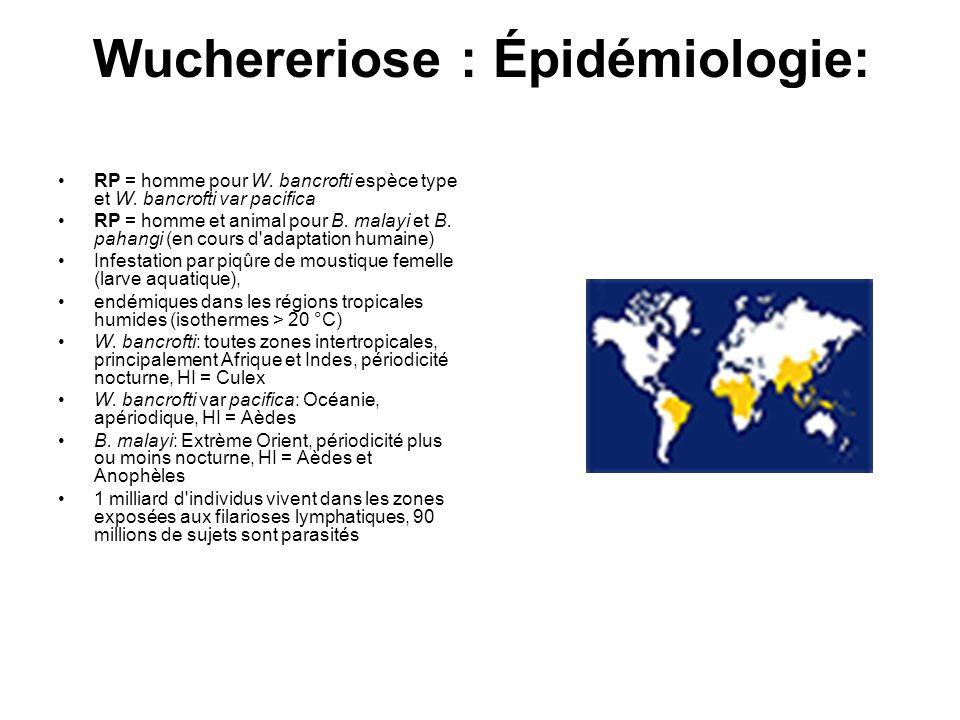 Wuchereriose : Épidémiologie: RP = homme pour W. bancrofti espèce type et W. bancrofti var pacifica RP = homme et animal pour B. malayi et B. pahangi
