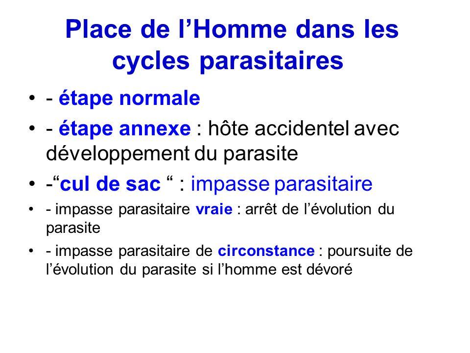 Place de lHomme dans les cycles parasitaires - étape normale - étape annexe : hôte accidentel avec développement du parasite -cul de sac : impasse par