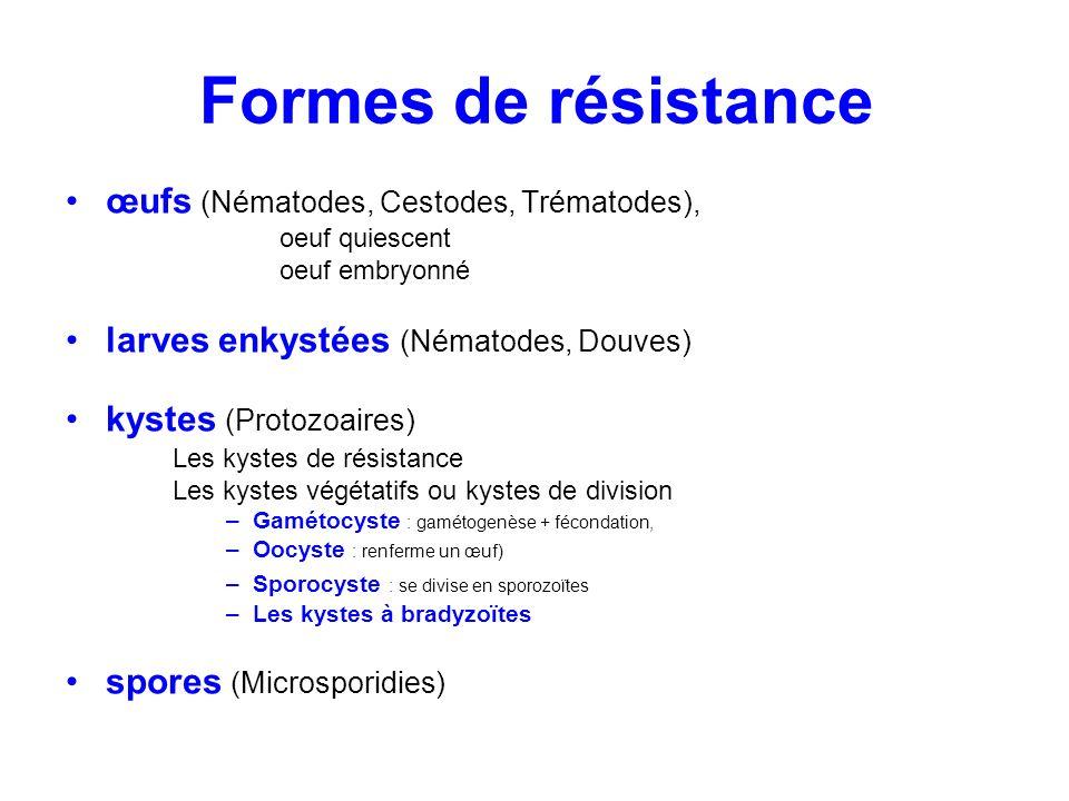 Formes de résistance œufs (Nématodes, Cestodes, Trématodes), oeuf quiescent oeuf embryonné larves enkystées (Nématodes, Douves) kystes (Protozoaires)