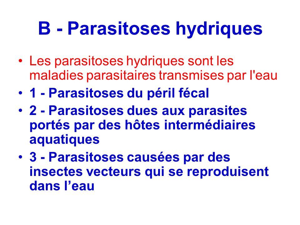 B - Parasitoses hydriques Les parasitoses hydriques sont les maladies parasitaires transmises par l'eau 1 - Parasitoses du péril fécal 2 - Parasitoses