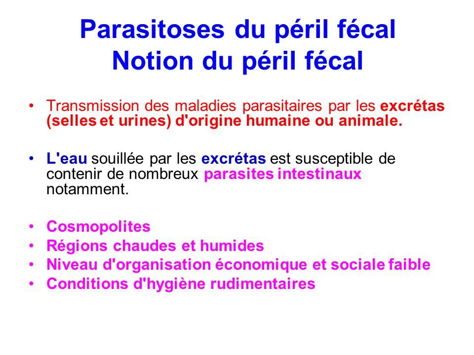 Parasitoses du péril fécal Notion du péril fécal Transmission des maladies parasitaires par les excrétas (selles et urines) d'origine humaine ou anima