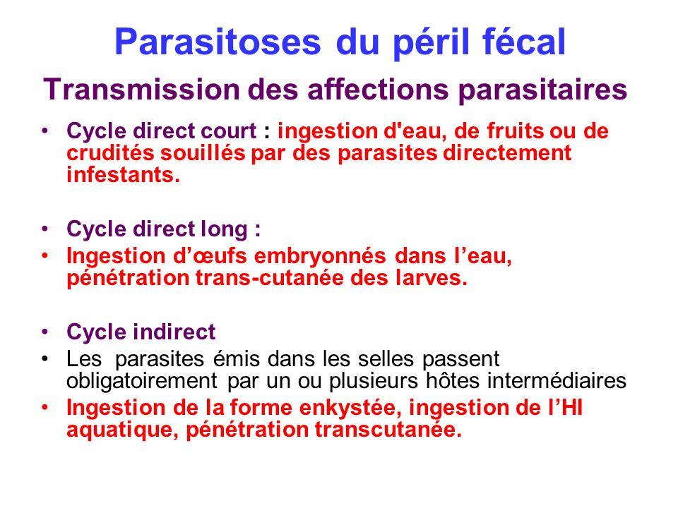 Parasitoses du péril fécal Transmission des affections parasitaires Cycle direct court : ingestion d'eau, de fruits ou de crudités souillés par des pa