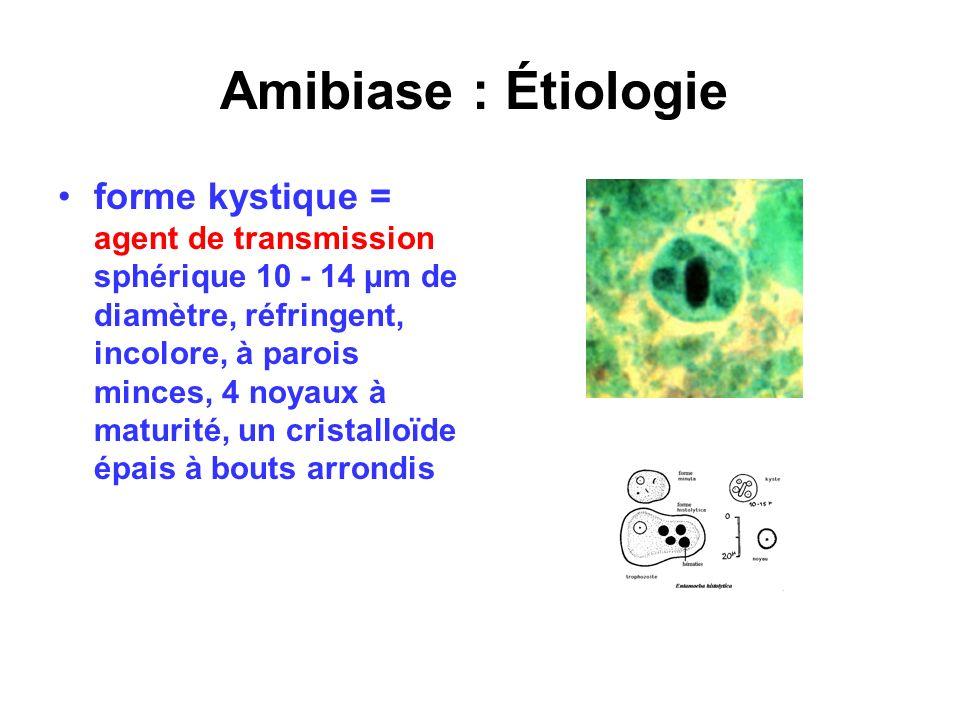 Amibiase : Étiologie forme kystique = agent de transmission sphérique 10 - 14 μm de diamètre, réfringent, incolore, à parois minces, 4 noyaux à maturi