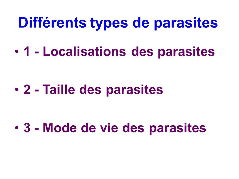 Différents types de parasites 1 - Localisations des parasites 2 - Taille des parasites 3 - Mode de vie des parasites