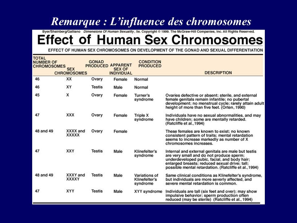 Remarque : Linfluence des chromosomes