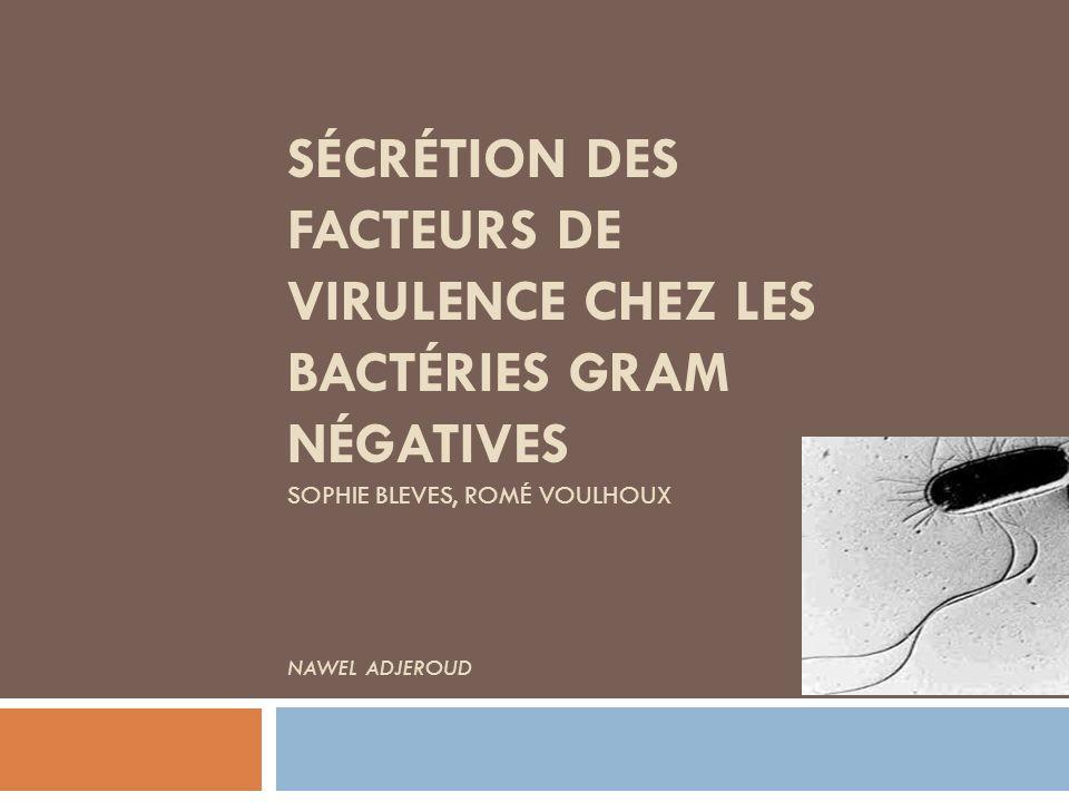 Sécrétion Protéines Enzymes Toxines Excrétion Elimination de Déchets Survie et Adaptation