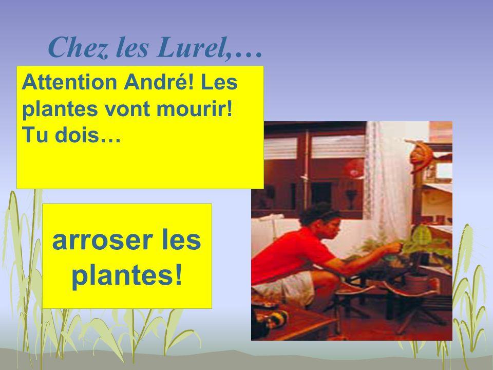 Chez les Lurel,… arroser les plantes! Attention André! Les plantes vont mourir! Tu dois…