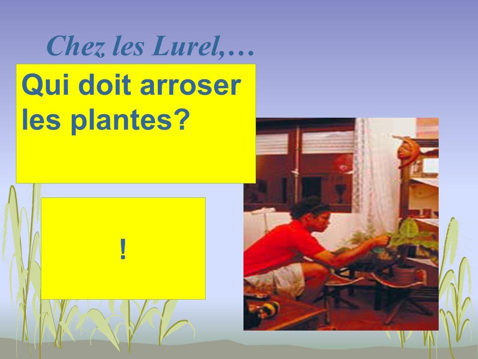 Chez les Lurel,… ! Qui doit arroser les plantes