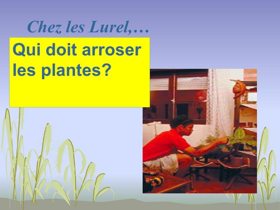 Chez les Lurel,… Qui doit arroser les plantes?