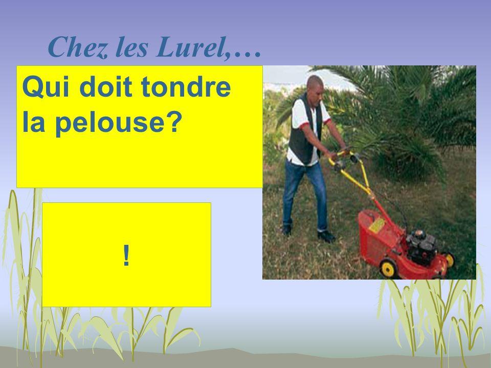 Chez les Lurel,… ! Qui doit tondre la pelouse?