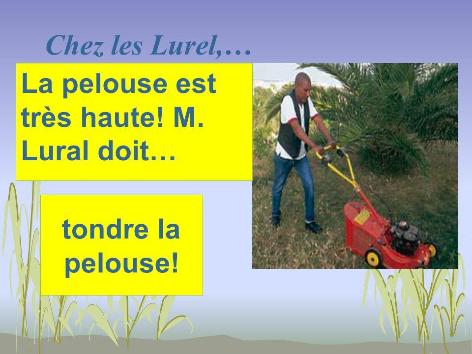 Chez les Lurel,… tondre la pelouse! La pelouse est très haute! M. Lural doit…