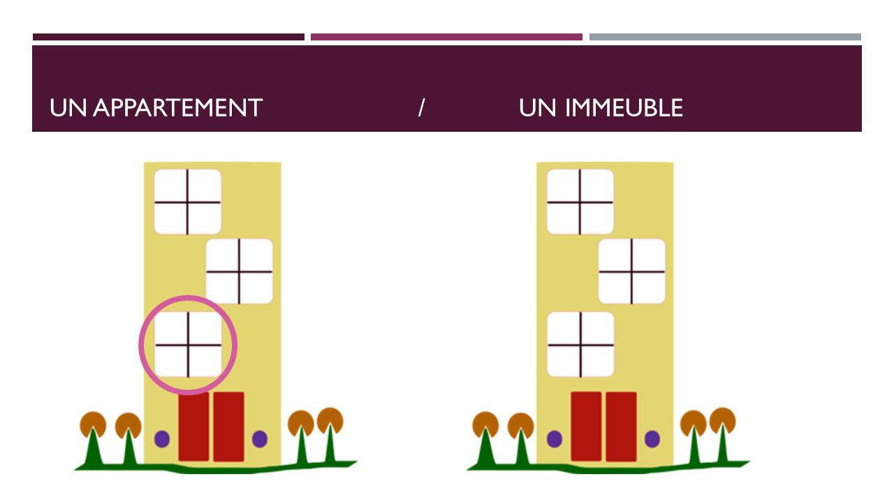 UN APPARTEMENT/UN IMMEUBLE