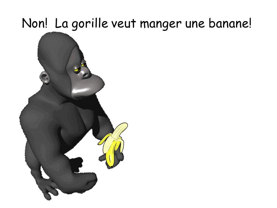 Non! La gorille veut manger une banane!