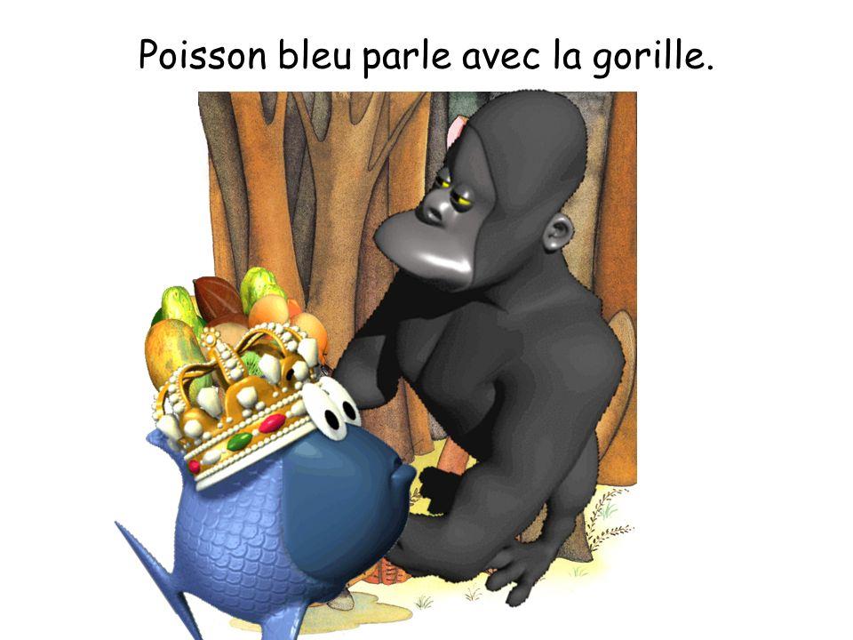 Poisson bleu parle avec la gorille.