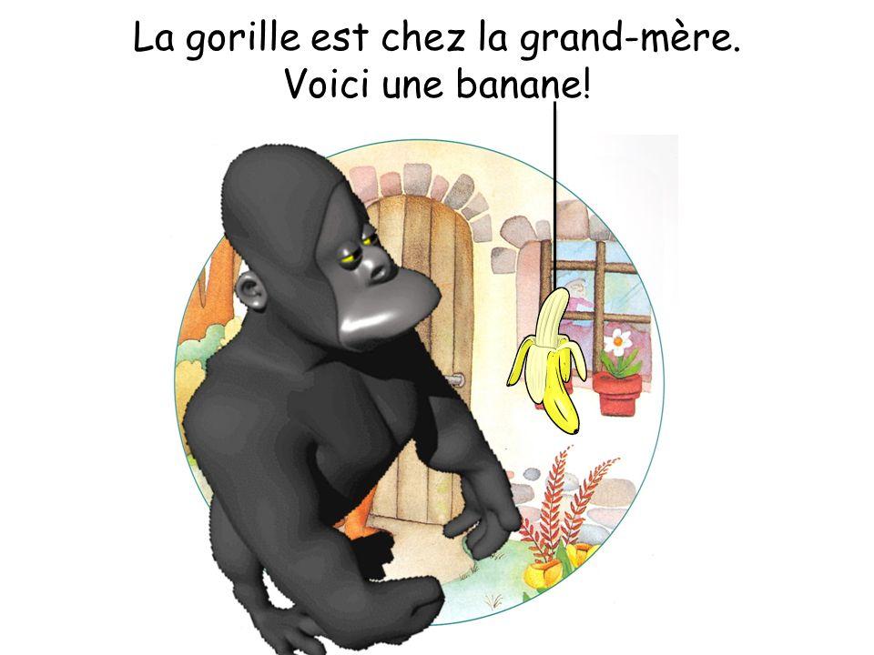 La gorille est chez la grand-mère. Voici une banane!