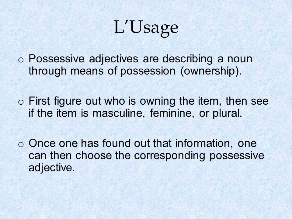 LUsage o Possessive adjectives are describing a noun through means of possession (ownership).