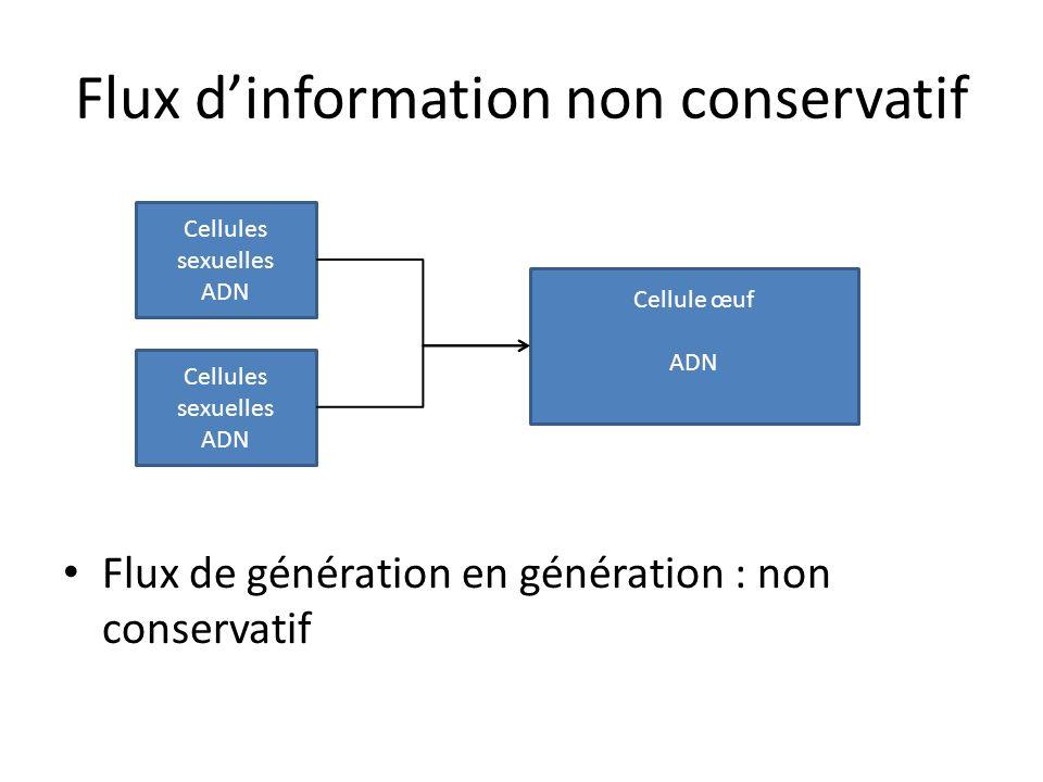 Flux dinformation non conservatif Flux de génération en génération : non conservatif Cellule œuf ADN Cellules sexuelles ADN Cellules sexuelles ADN