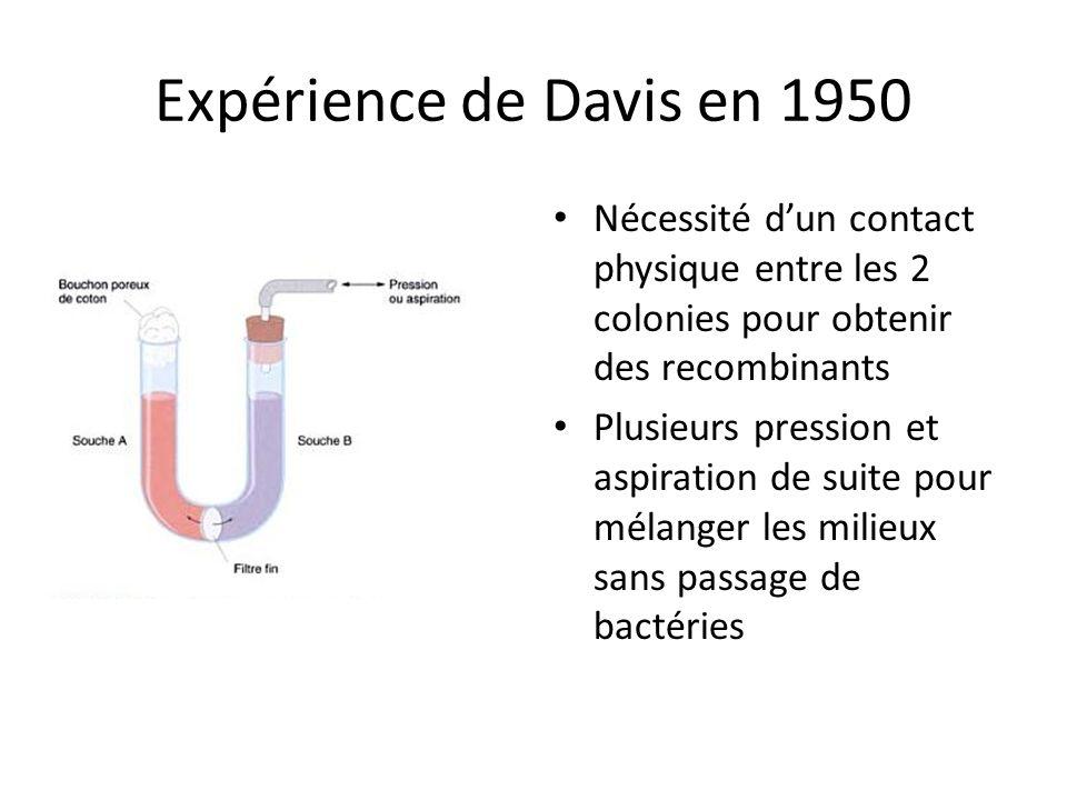 Expérience de Davis en 1950 Nécessité dun contact physique entre les 2 colonies pour obtenir des recombinants Plusieurs pression et aspiration de suit