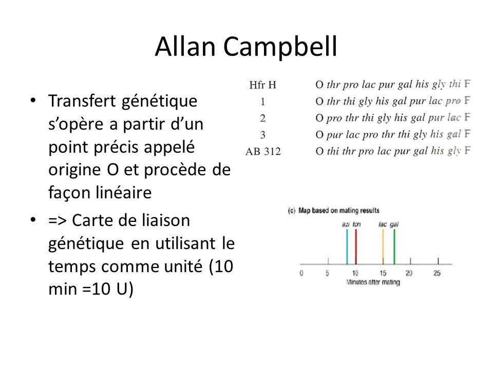 Allan Campbell Transfert génétique sopère a partir dun point précis appelé origine O et procède de façon linéaire => Carte de liaison génétique en uti