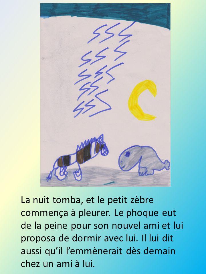 La nuit tomba, et le petit zèbre commença à pleurer. Le phoque eut de la peine pour son nouvel ami et lui proposa de dormir avec lui. Il lui dit aussi