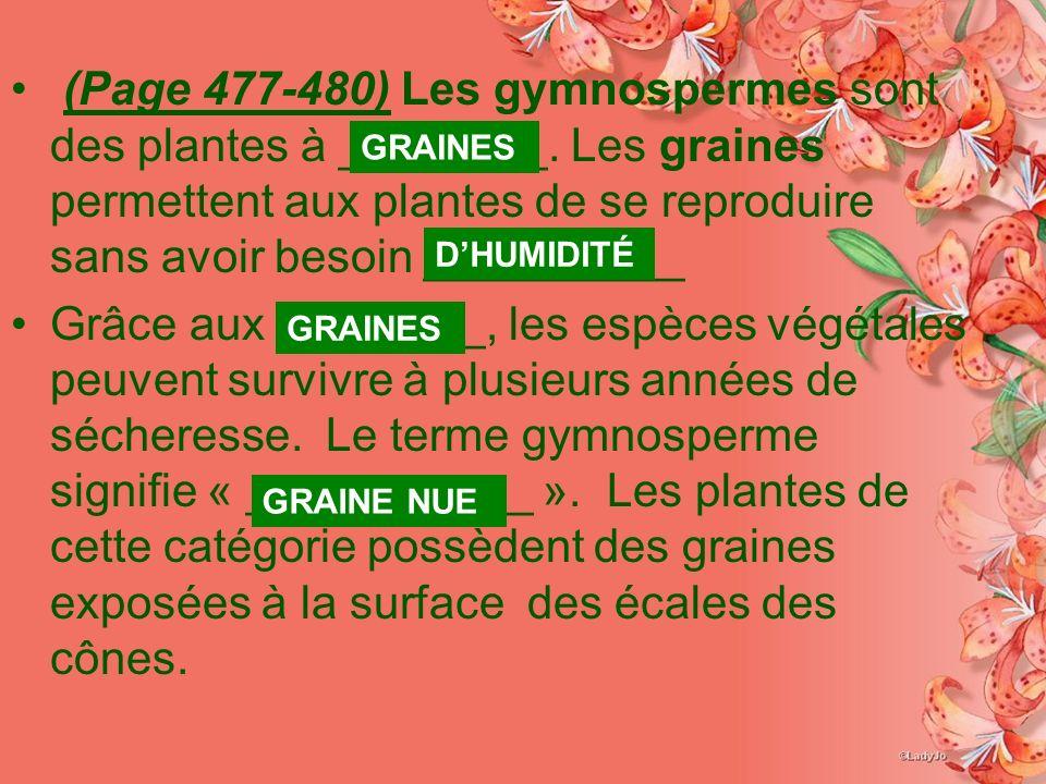 (Page 477-480) Les gymnospermes sont des plantes à ________. Les graines permettent aux plantes de se reproduire sans avoir besoin __________ Grâce au