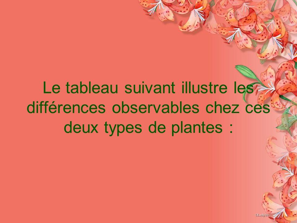 Le tableau suivant illustre les différences observables chez ces deux types de plantes :