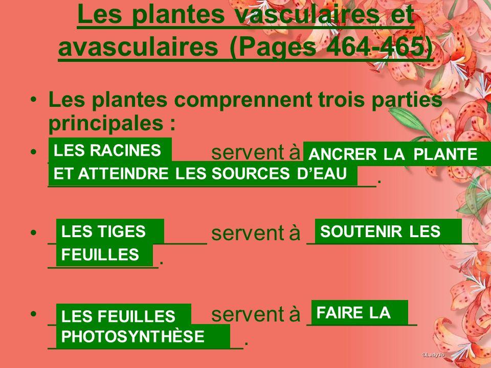 Les plantes vasculaires et avasculaires (Pages 464-465) Les plantes comprennent trois parties principales : _____________ servent à ______________ ___