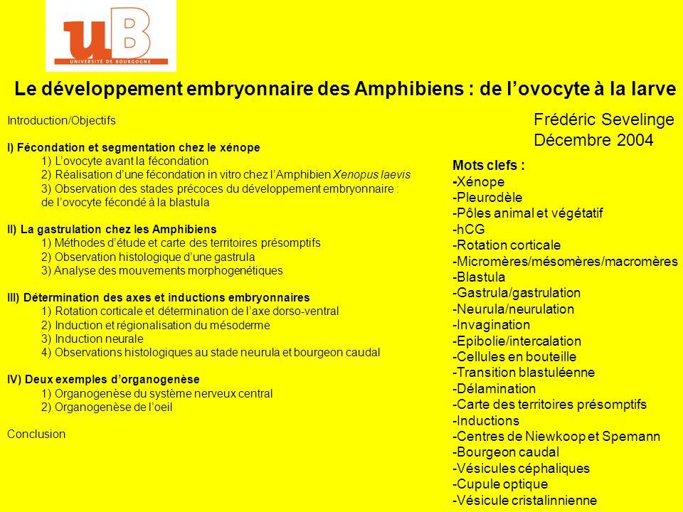 Bibliographie : -F.GILBERT : Biologie du développement ; De Boeck Université 1996 -A.LEMOIGNE et J.FOUCRIER : Biologie du développement ; Dunod 5ème édition 2001 -L.WOLPERT : Biologie du développement : les grands principes ; Dunod 2000 -T.DARRIBERE : Introduction à la biologie du développement ; Belin 2002 -T.DARRIBERE : Biologie du développement : le modèle amphibien ; Diderot éditeurs 1997 Corrélations : Leçons de démonstration secteur A : -Informations de position lors du développement embryonnaire -Les mouvements lors du développement embryonnaire -Les gènes du développement Leçons de contre-option ab : -Gamètes et fécondation chez les animaux -Les phénomènes dinduction lors du développement embryonnaire -Vitellus et vitellogenèse -Les axes de polarité de lorganisme animal