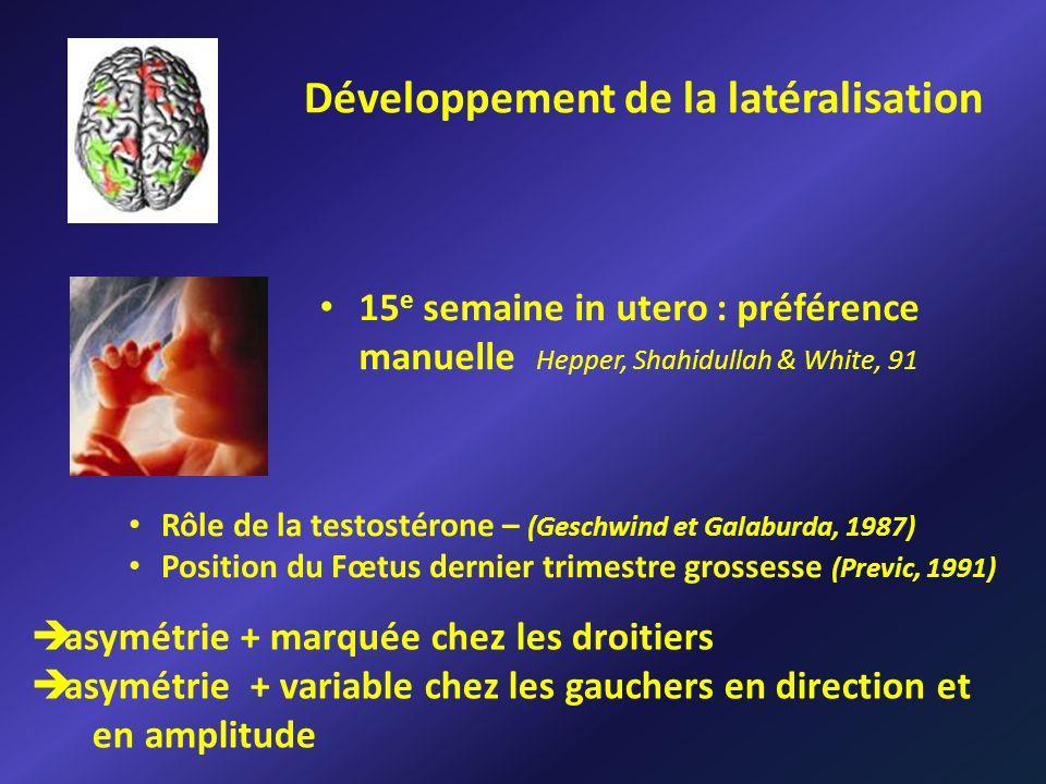 Développement de la latéralisation 15 e semaine in utero : préférence manuelle Hepper, Shahidullah & White, 91 Rôle de la testostérone – (Geschwind et