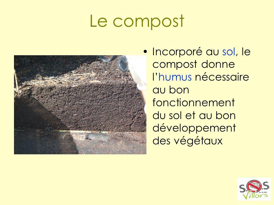 Le compost Incorporé au sol, le compost donne lhumus nécessaire au bon fonctionnement du sol et au bon développement des végétaux