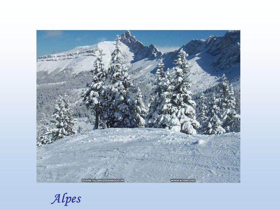 Vallée dOssau - Pyrénées