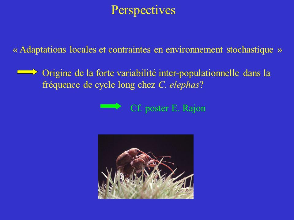 Perspectives « Adaptations locales et contraintes en environnement stochastique » Origine de la forte variabilité inter-populationnelle dans la fréquence de cycle long chez C.