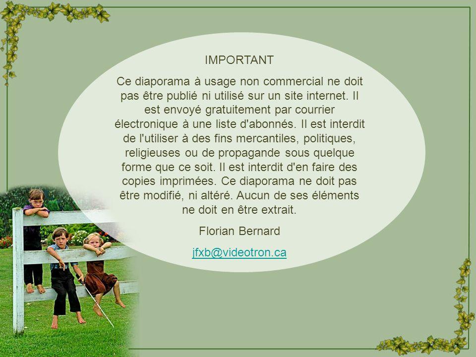 Les Compagnons de la Chanson Mixage audio - F.Bernard Création Florian Bernard Tous droits réservés – 2005 jfxb@videotron.ca