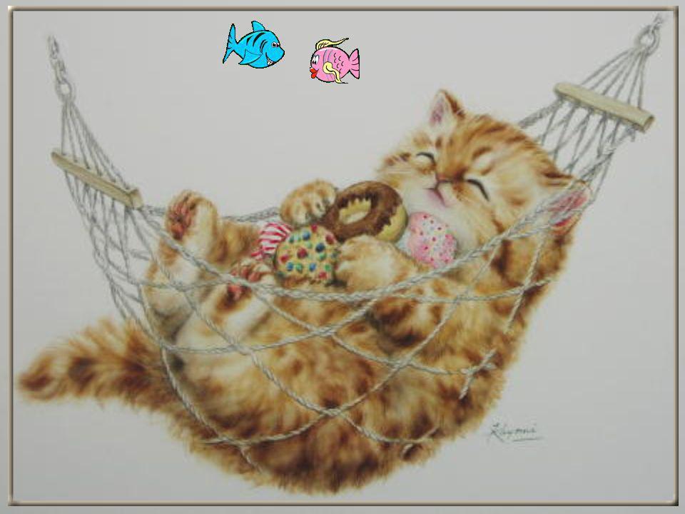Quand je me couche, je dors sans prendre de somnifère et je ne fais jamais de cauchemar