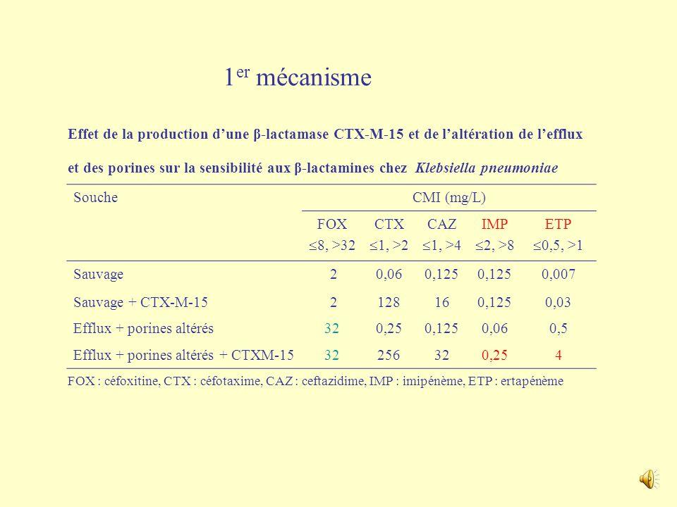 Retour de voyages ….. Attention aux K. pneumoniae résistantes aux carbapénèmes : plusieurs mécanismes responsables de cette résistance … nouveau défi