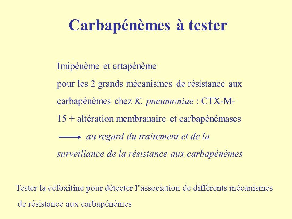 Carbapénémase OXA-48 (β-lactamase Classe D)