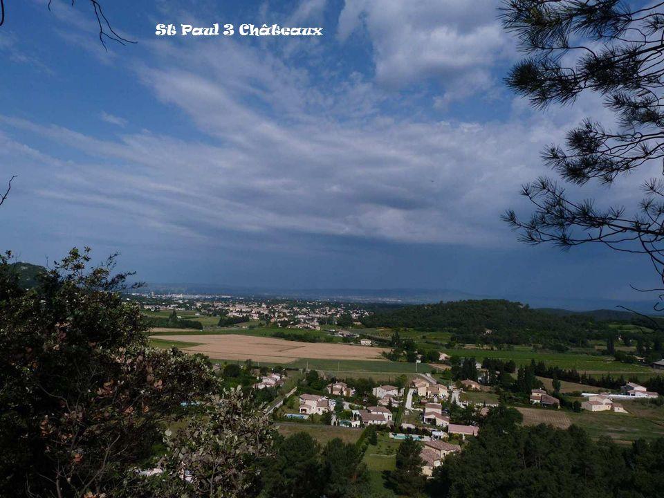 Lin de Narbonne