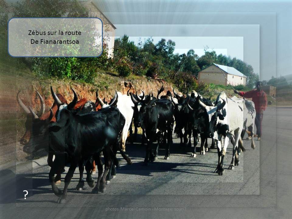 ? Ponts sur la route De Fianarantsoa 25photos Marcel Camoin - Montage: souri7
