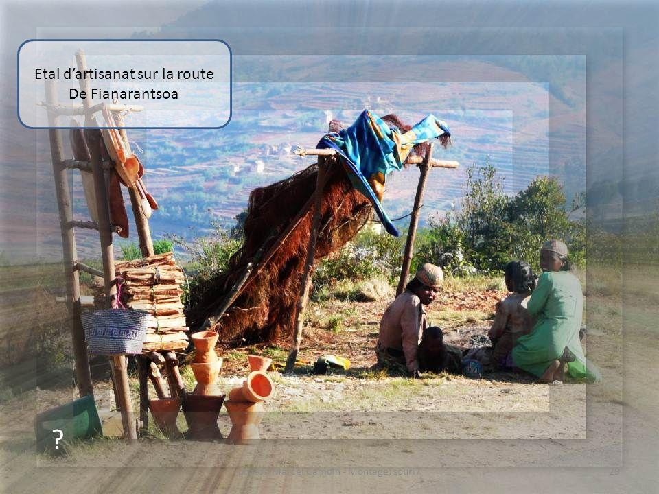 ? Zébus en déplacement sur la route De Fianarantsoa 28photos Marcel Camoin - Montage: souri7