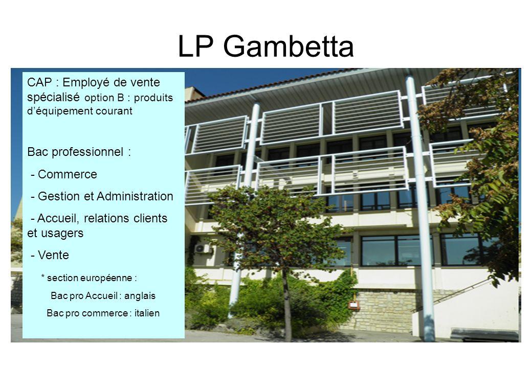 LP Gambetta CAP : Employé de vente spécialisé option B : produits déquipement courant Bac professionnel : - Commerce - Gestion et Administration - Acc